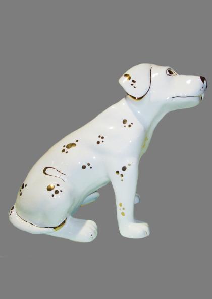 Dalmatian dog Gold