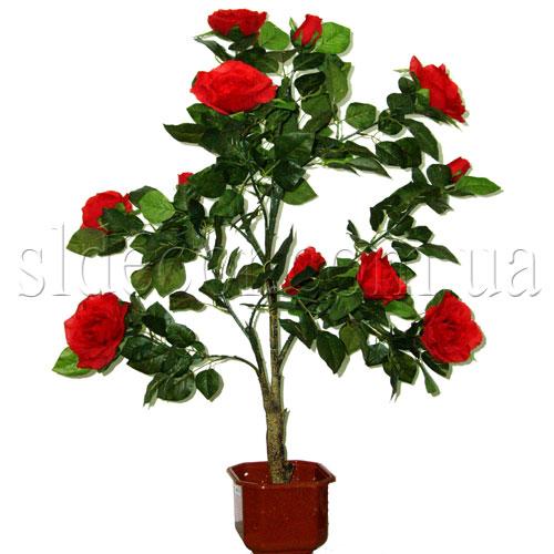 Роза красная высота 110см продается