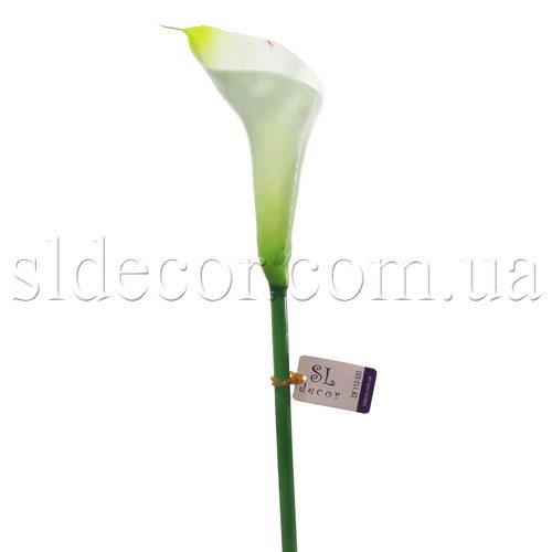 Кала без листьев бело зеленая пр во