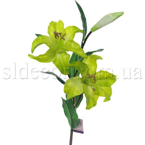 Лилия зеленая пр во голландия