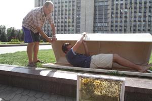 Лечебная разработка. Главный пчеловод Донецкой области утверждает, что «жужжащий» саркофаг избавит от любых недугов